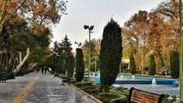 پارک شهر
