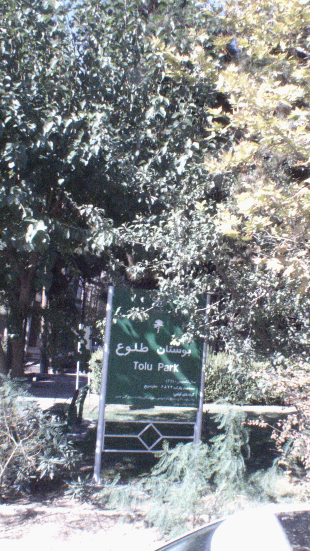 بوستان طلوع