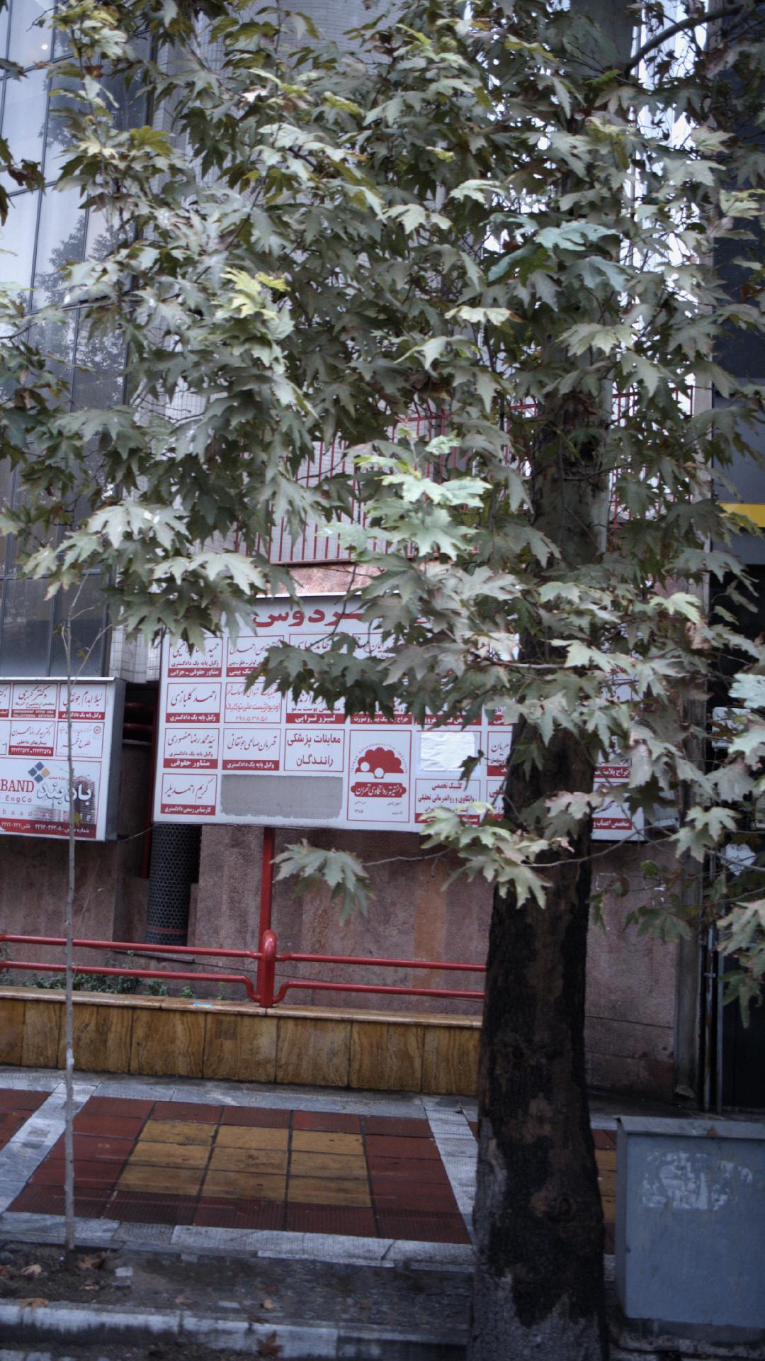 انستیوتو روانکاری تهران