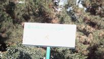بوستان- شهرداری منطقه 5