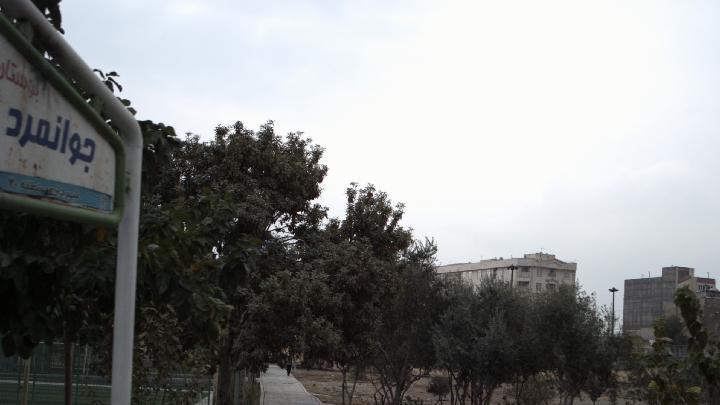 بوستان جوانمرد