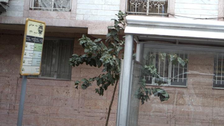 ایستگاه اتوبوس شهرداری