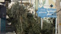 بوستان محمدی