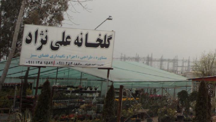 گلخانه علی نژاد