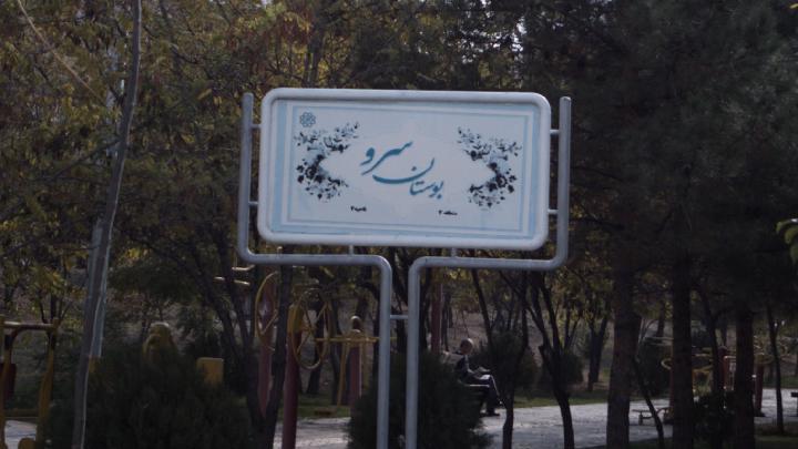 بوستان سرو