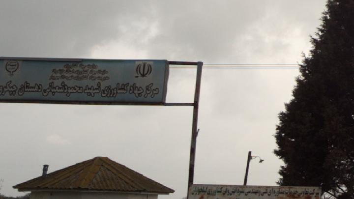 مرکز جهاد کشاورزی شهید محمود شعبانی دهستان چپکرود